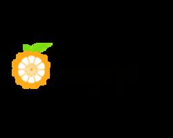 Orange Pi